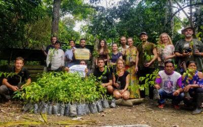 Bosque Medicinal